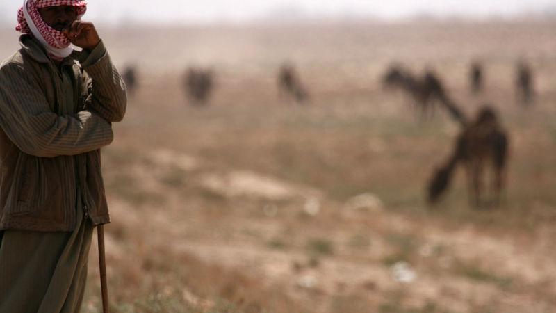 Foto: Cristian Iohan Ştefănescu. Bildet er tatt på veien mellom Palmyra og Raqqa, et område som nå kontrolleres av ISIS.